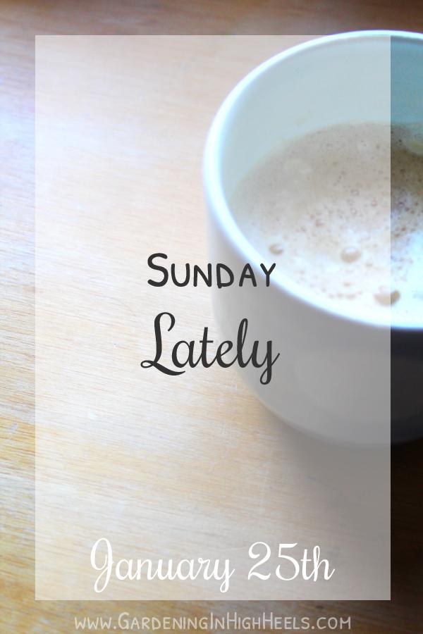 Sunday Lately 4