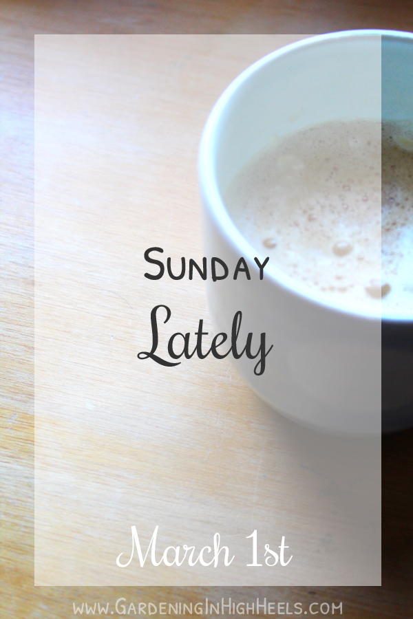 It's time for Sunday lately! Wat are you up to?