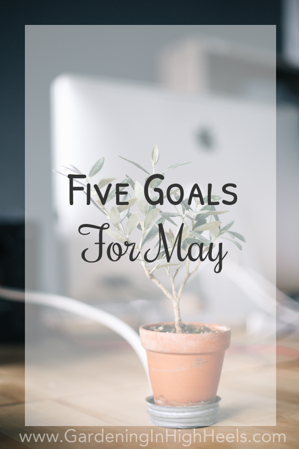 Five goals for May #BloggerMayI