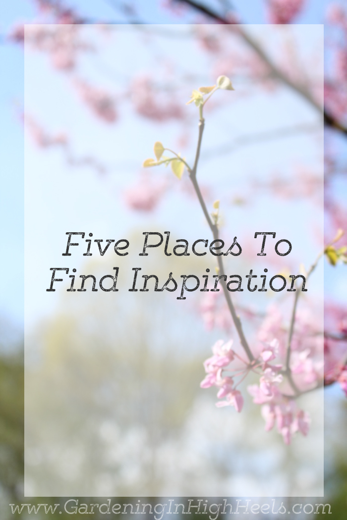 Inspiration comes in different places for different people. If you need a kick of inspiration and want to try something new, here are five places to try. #BloggerMayI