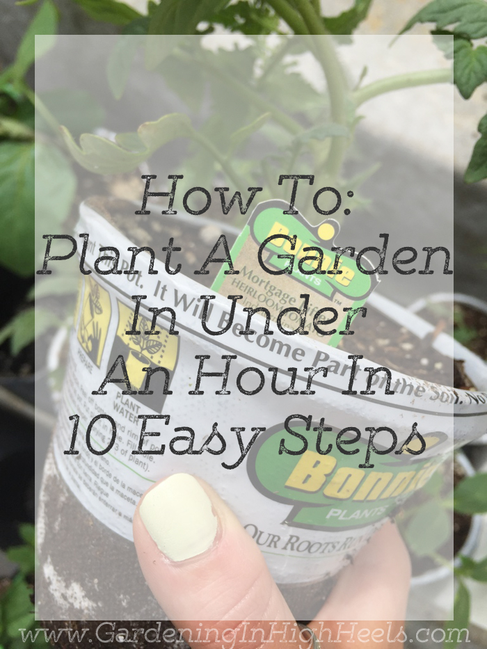 How to plant a garden in under an hour in 10 easy steps.