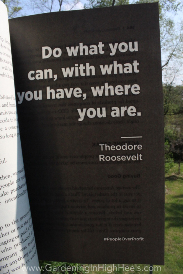 """Do what you can, with what you have, where you are."" Theodore Roosevelt #quote #peopleoverprofit"
