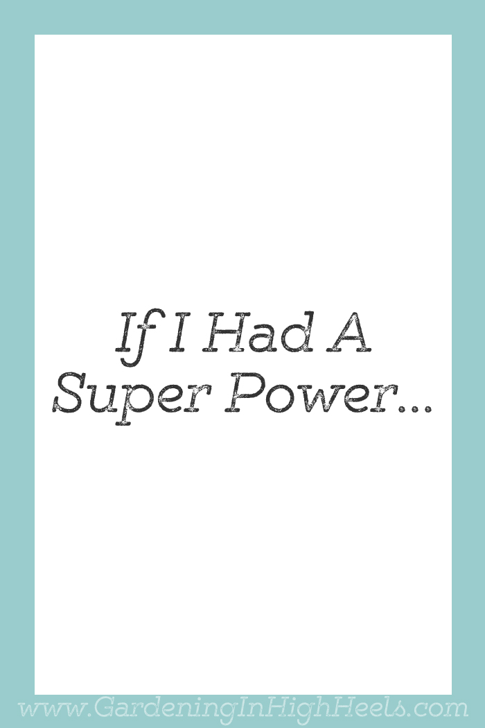 If I had a super power...