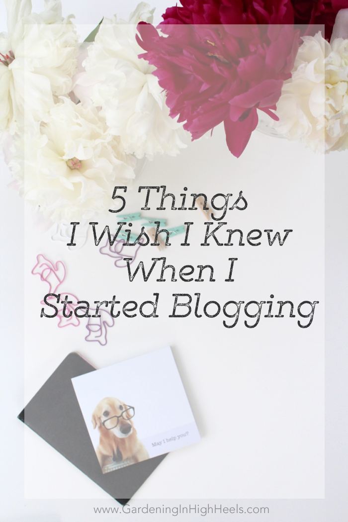 5 things I wish I knew when I started blogging. Don't make these mistakes!