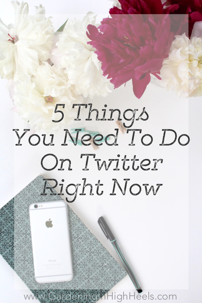 Do these 5 things on Twitter right now to be your best