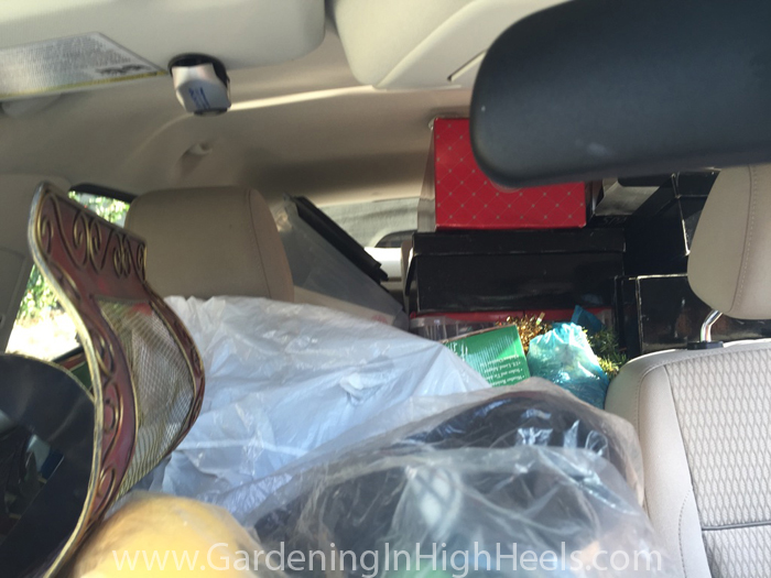 How much can you fit into a Ford Focus?
