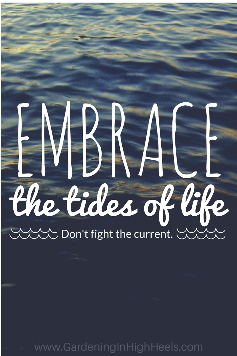 Learn how to embrace the tides of life - you'll be so much happier when you don't have to fight against the waves.