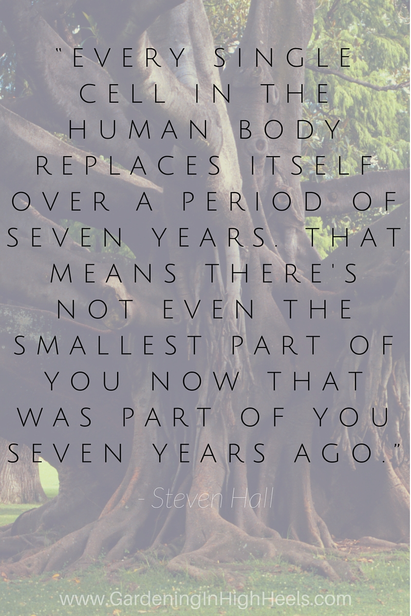 """Every single cell in the human body replaces itself over a period of seven years. That means there's not even the smallest part of you now that was part of you seven years ago."" - Steven Hall. We are in a constant state of change."