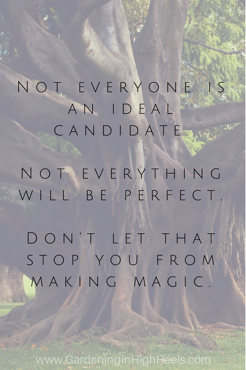 Not everyone is an ideal candidate but don't let that stop you from doing your thing and working hard to make magic happen!