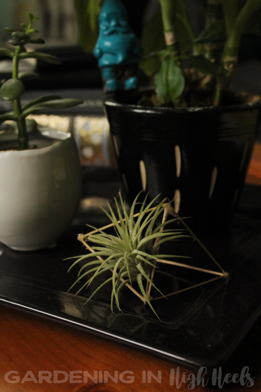 Double air plant holder DIY with toothpicks